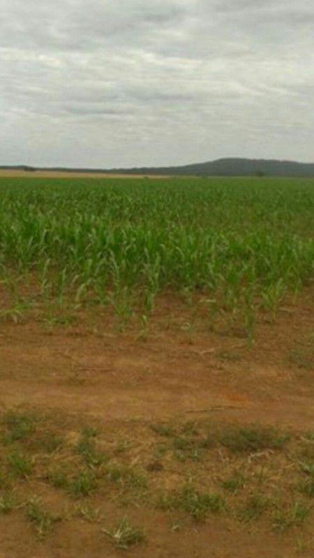 Fazenda de 5.5760 Hectares localizada no município de Doverlândia-GO