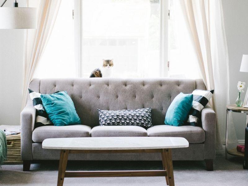 Como escolher um sofá para seu apartamento