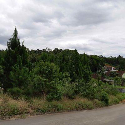 Terreno-Comercial-Residencial-Vila-Lenzi