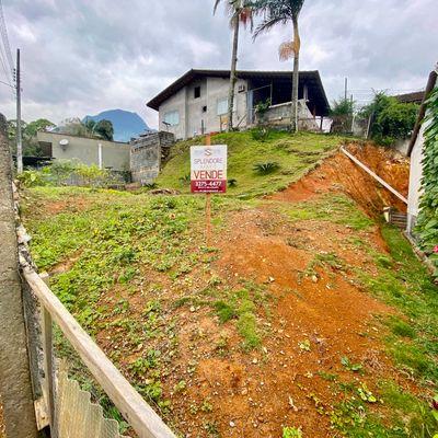 Terreno em região alta na Ilha da Figueira